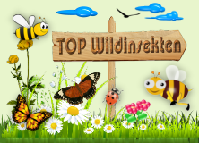 Top Wildinsekten!